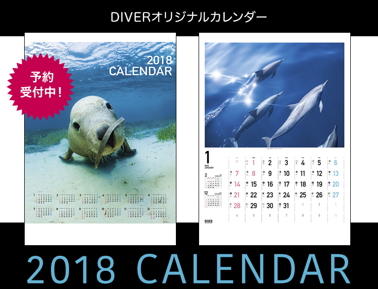 DIVERオリジナルカレンダー2018